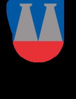 Small vk logo
